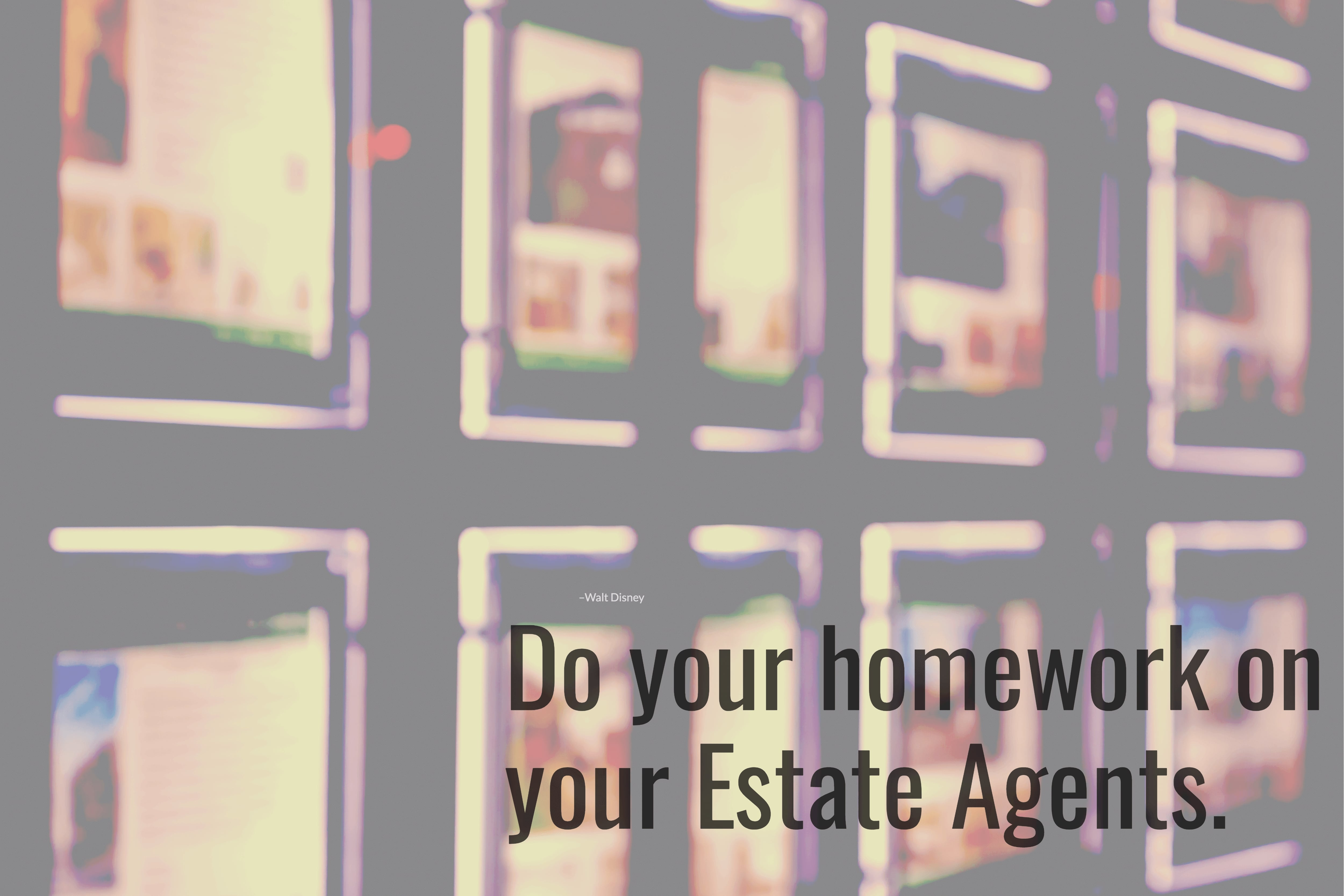 do-your-home-work-on-estate-agents